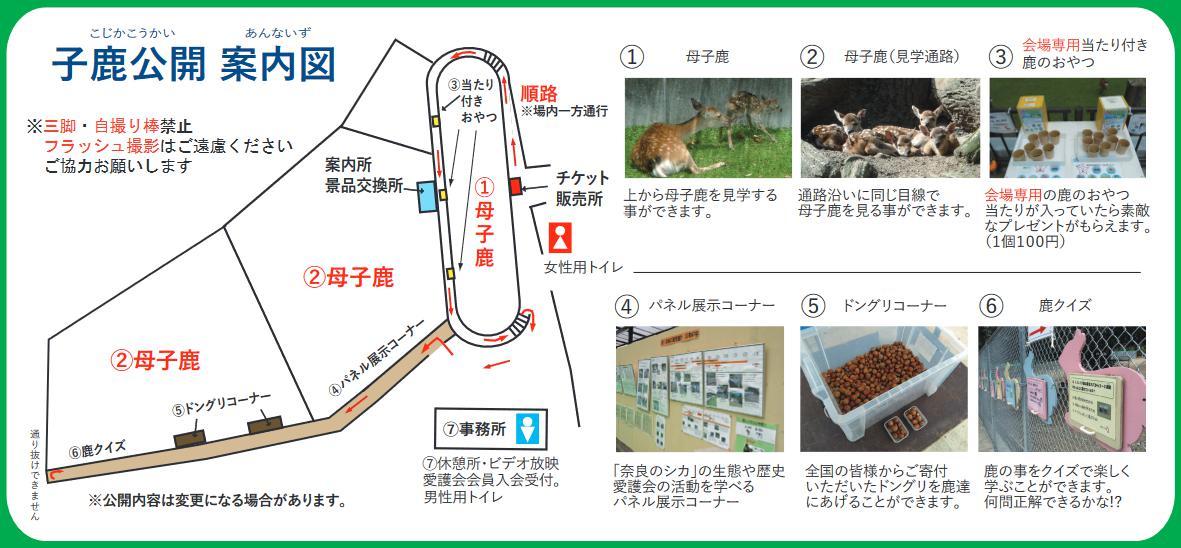 子鹿公開 案内図